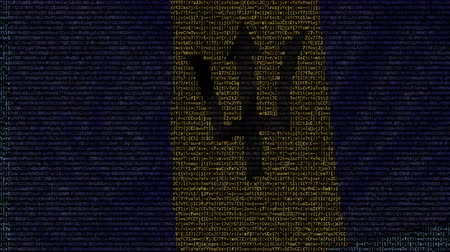 barbados : Waving flag of Barbados made of text symbols on a computer screen. Conceptual loopable animation