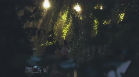 wetness : Heavy rain in city park in the evening Stock Footage