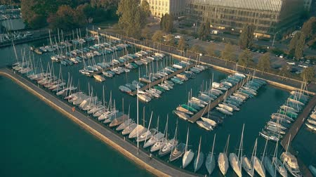 veículo aquático : Aerial view of Zurichsee or lake Zurich marina full of moored sailboats Vídeos