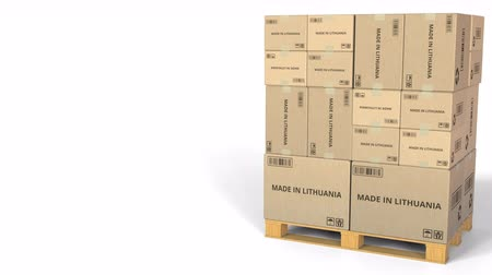 eksport : MADE IN LITHUANIA text on warehouse cartons. 3D animation Wideo