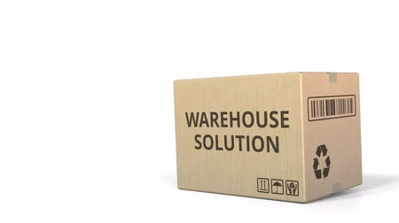 logisztikai : WAREHOUSE SOLUTION text on a warehouse carton. 3D animation