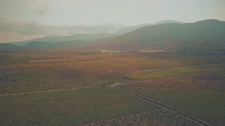 enredo : Aerial view of fruit orchards and vineyards in Sierra Nevada mountains. Andalusia, Spain