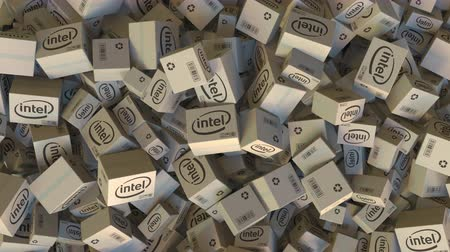 intel : INTEL logo on piled cartons. Editorial animation