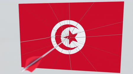 アーチェリー : Archery arrow hits flag of TUNISIA plate. Conceptual 3D animation 動画素材
