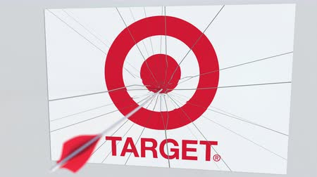 criticism : Archery arrow hits plate with TARGET logo. Corporate problems conceptual editorial animation