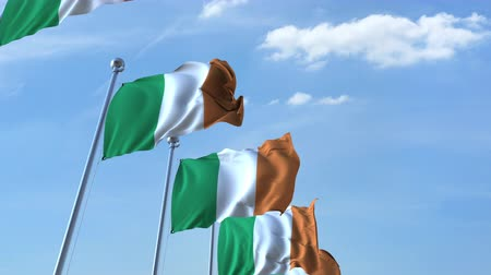 flapping : Row of waving flags of Ireland agaist blue sky, seamless loop
