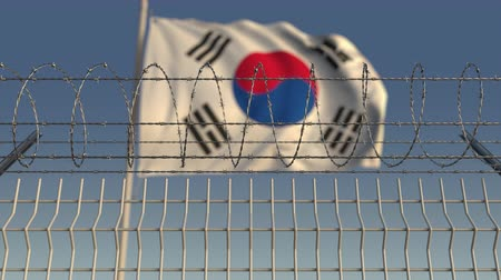 farpado : Barbed wire against waving flag of South Korea. Loopable 3D animation Stock Footage