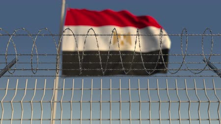 korlátozás : Blurred waving flag of Egypt behind barbed wire fence. Loopable 3D animation