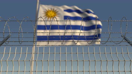 korlátozás : Blurred waving flag of Uruguay behind barbed wire fence. Loopable 3D animation
