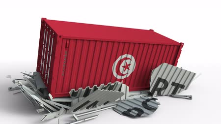 tunesie : Cargo container with flag of Tunisia breaks container with IMPORT text. Conceptual 3D animation Stockvideo