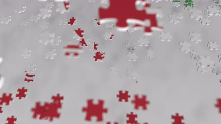 consist : Flag of Iran being made with jigsaw puzzle pieces. Iranian problem solution conceptual 3D animation Stock Footage