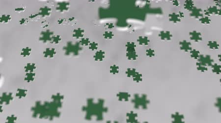 consist : Flag of Saudi Arabia being made with jigsaw puzzle pieces. Problem solution conceptual 3D animation Stock Footage