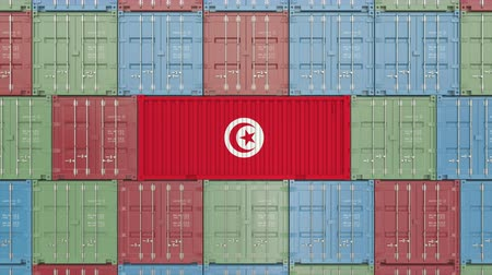tunezja : Container with flag of Tunisia. Tunisian import or export related 3D animation