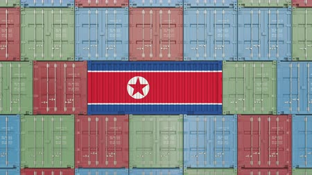 dprk : Container with flag of North Korea. Korean import or export related 3D animation