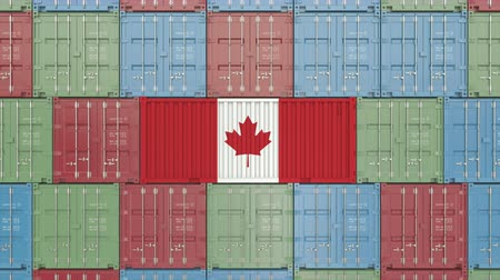 kanadský : Cargo container with flag of Canada. Canadian import or export related 3D animation
