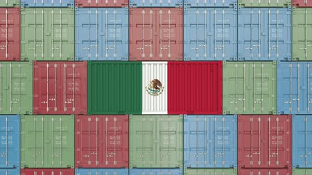 eksport : Container with flag of Mexico. Mexican import or export related 3D animation Wideo