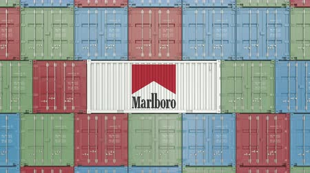 embarques : Contenedor con logo de Marlboro. Animación editorial 3D Archivo de Video