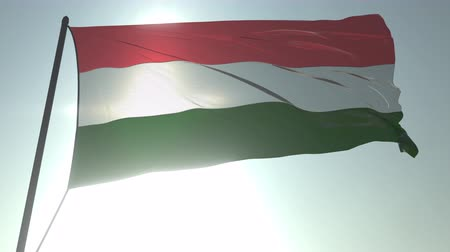 üç renkli : Waving flag of Hungary against shining sun and sky. Realistic loopable 3D animation