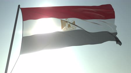 trikolóra : Waving flag of Egypt against shining sun and sky. Realistic loopable 3D animation