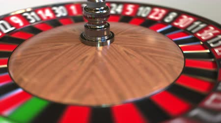 probabilidade : Casino roulette wheel ball hits 28 twenty-eight black. 3D animation Stock Footage
