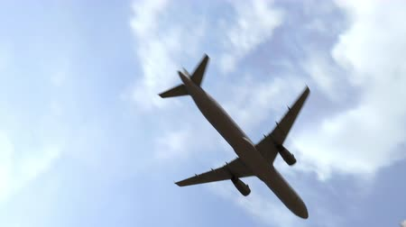 anka kuşu : Plane arrives to the city of Phoenix, United States. 3D animation Stok Video