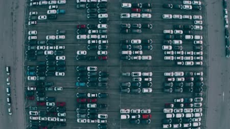 auto parking : Aerial top down view of a big automotive factory new cars storage