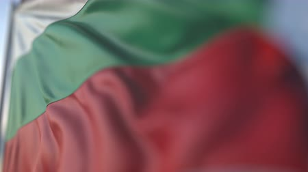 búlgaro : Waving flag of Bulgaria, shallow focus close-up. Realistic loopable 3D animation