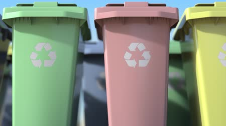 discard : Plastic recycling bins with for sorting domestic garbage, close-up. Loopable animation