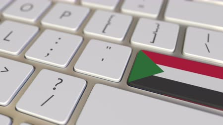 sudanian : Key with flag of Sudan on the computer keyboard switches to key with flag of the USA, translation or relocation related animation Stock Footage