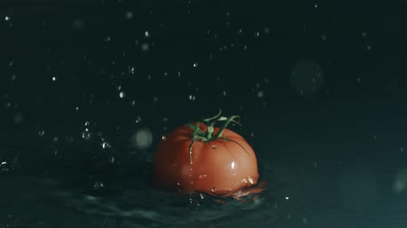 wetness : Red tomato falls on shallow water surface. Slow motion, shot on Red