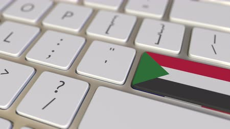sudanian : Key with flag of Sudan on the computer keyboard switches to key with flag of France, translation or relocation related animation Stock Footage