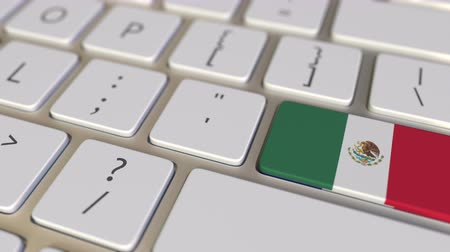 traduzione : Key with flag of Mexico on the computer keyboard switches to key with flag of France, translation or relocation related animation Filmati Stock