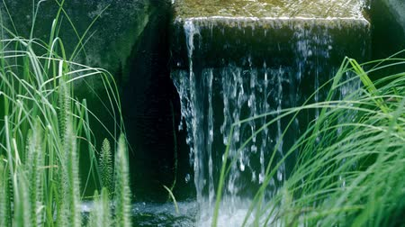 wetness : Small waterfall in the park, shot on Red camera Stock Footage