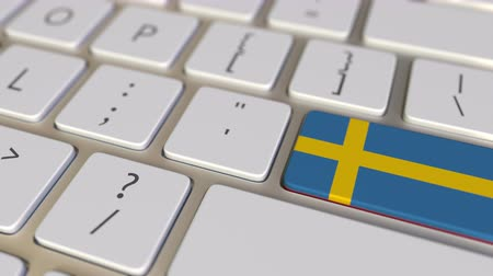 İsveççe : Key with flag of Sweden on the computer keyboard switches to key with flag of China, translation or relocation related animation