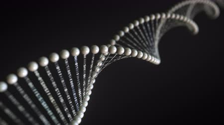genetic research : Rotating conceptual DNA molecule model with numbers sequences, loopable 3D animation Stock Footage