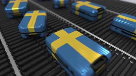 посетитель : Many travel suitcases featuring flag of Sweden on roller conveyer. Swedish tourism conceptual animation Стоковые видеозаписи