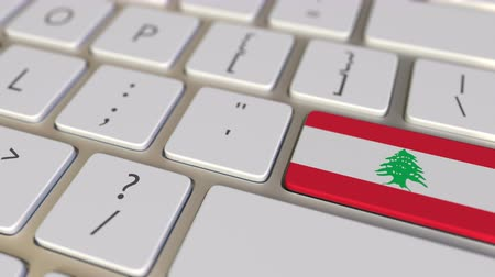 immigratie : Key with flag of Lebanon on the keyboard switches to key with flag of Germany, translation or relocation related animation