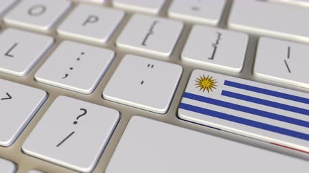 deslocalização : Key with flag of Uruguay on the computer keyboard switches to key with flag of France, translation or relocation related animation Stock Footage