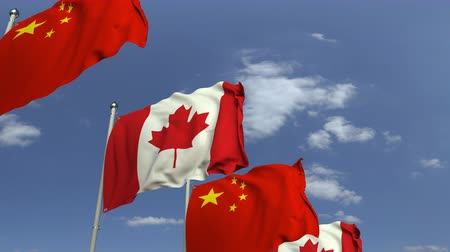 canadense : Row of waving flags of Canada and China, loopable 3D animation Stock Footage