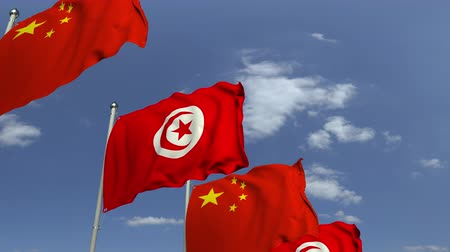 tunesie : Many flags of Tunisia and China, loopable 3D animation Stockvideo