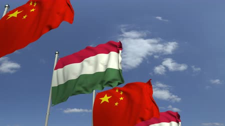 yabancı : Row of waving flags of Hungary and China, loopable 3D animation Stok Video