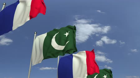 treaty : Waving flags of Pakistan and France, loopable 3D animation