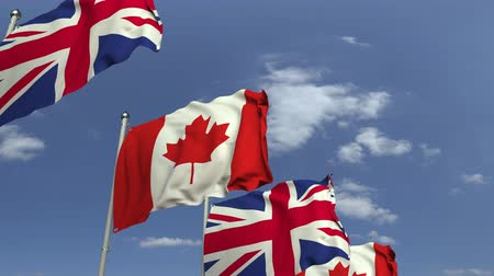 샤프트 : Row of waving flags of Canada and the United Kingdom, loopable 3D animation