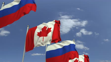 семинар : Row of waving flags of Canada and Russia, loopable 3D animation Стоковые видеозаписи