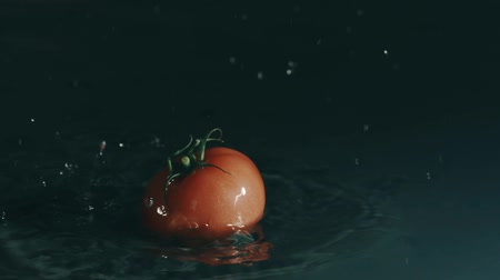wetness : Tomato falls on wet surface on dark background. Slow motion shot on Red Stock Footage
