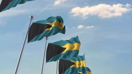 şaft : Flying flags of Bahamas. Loopable 3D animation Stok Video