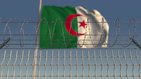 korlátozás : National flag of Algeria behind barbed wire fence. Conceptual loopable 3D animation