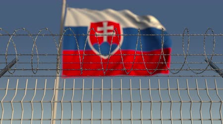 prikkeldraad : Many waving flag of Slovakia behind barbed wire fence. Conceptual loopable 3D animation