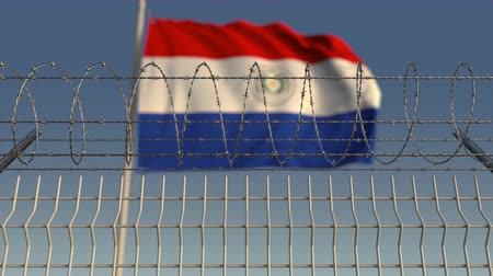 farpado : National flag of Paraguay behind barbed wire fence. Conceptual loopable 3D animation