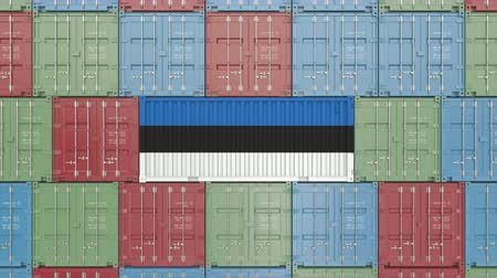 container terminal : Container with flag of Estonia. Estonian goods related conceptual 3D animation